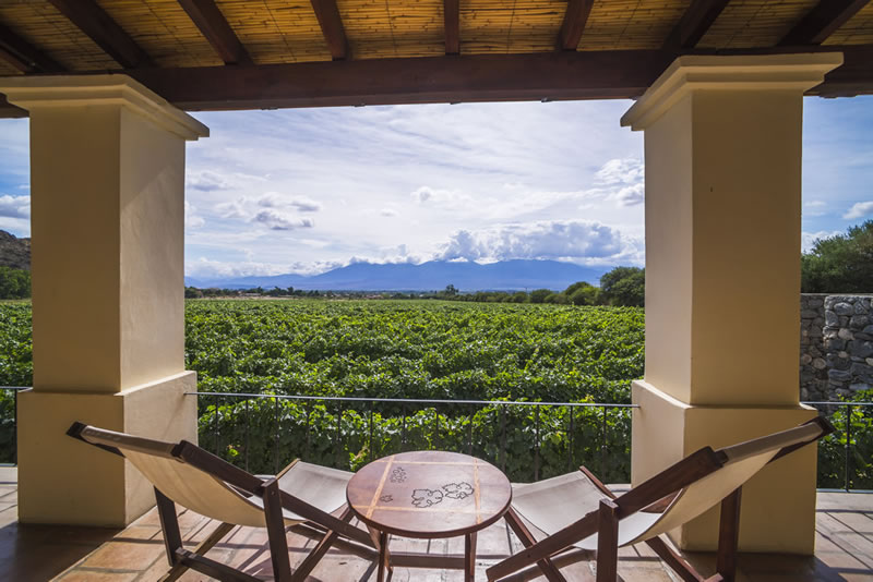Standar Room with View To Vineyards And Quebrada De Cafayate